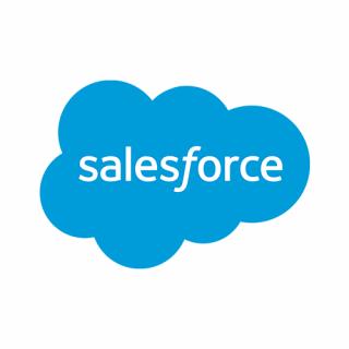Salesforce plugin van Company.info